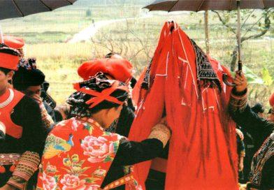 The DAO Community of 54 Ethnic groups in Vietnam