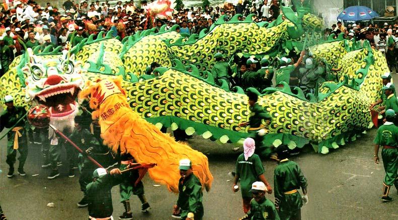 Hoa drago tants - holylandvietnamstudies.com