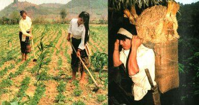 Вьетнамдагы 54 этникалык топтордон турган THO Коомчулугу