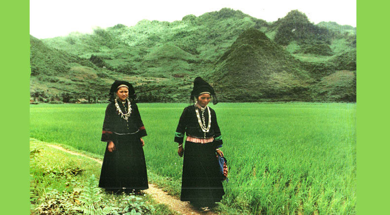Nung people - holylandvietnamstudies.com