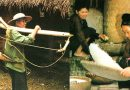 54 etnisen ryhmän SAN DIU -yhteisö Vietnamissa