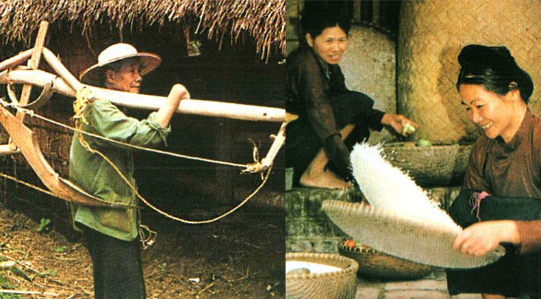 San-Diu xalqi - holylandvietnamstudies.com