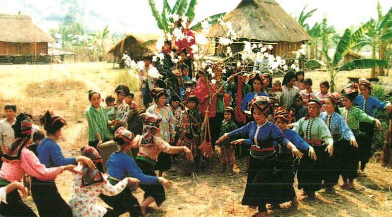 Mum populum Xinh - holylandvietnamstudies.com